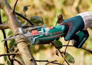 herramientas de podar arboles y ramas