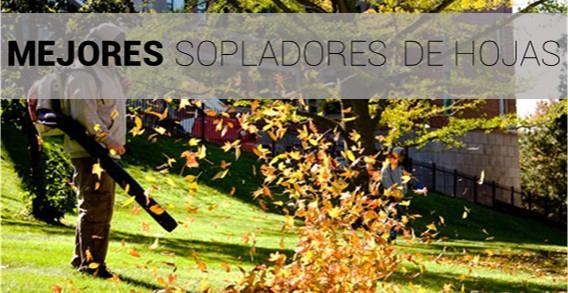 mejores sopladores de hojas