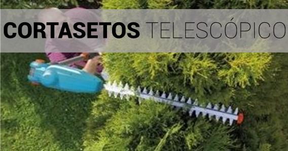 Cortasetos Telescópico / de Altura
