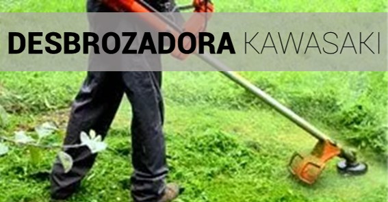 Mejor desbrozadora kawasaki